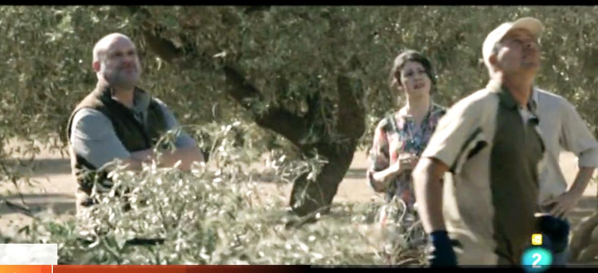 Aina Requena en El olivo de Icíar Bollaín